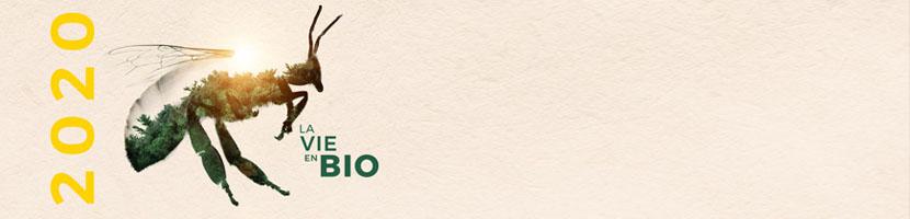 Salon MARJOLAINE 2020 - présentation du salon