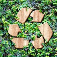 Objectif Zéro Déchet : comment protéger sa santé et la planète tout en faisant des économies