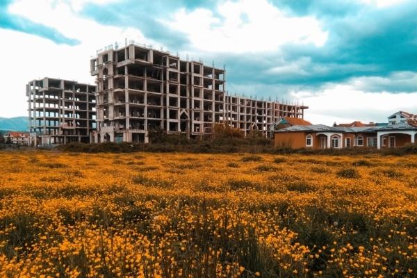 Des immeubles en construction près d'un champs